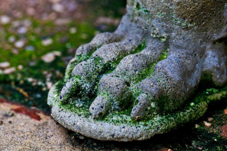 Clawfoot Planter