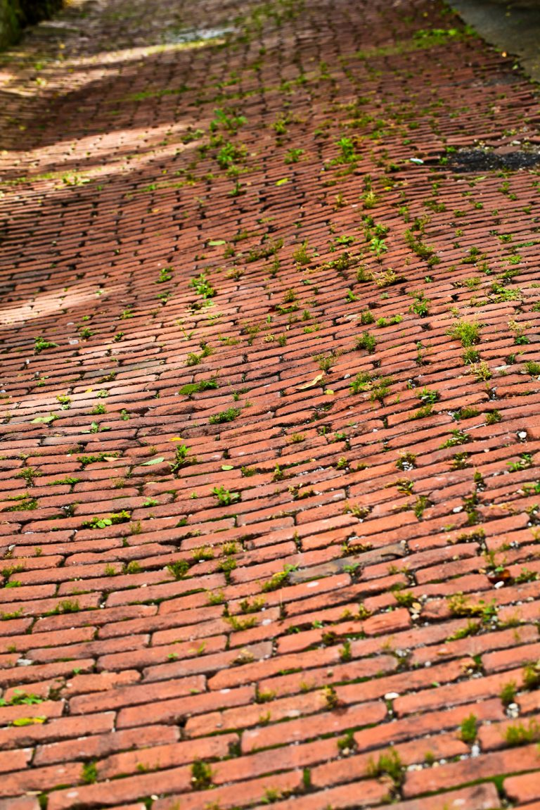 The Old Brick Road