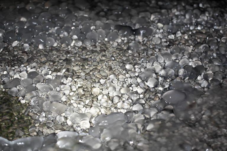 Water Pebbles